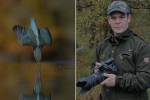 Alan mcfadyen kingfisher photograph