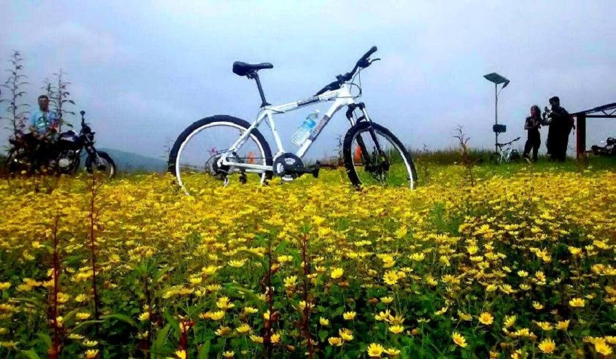 Countryside Cycle Ride